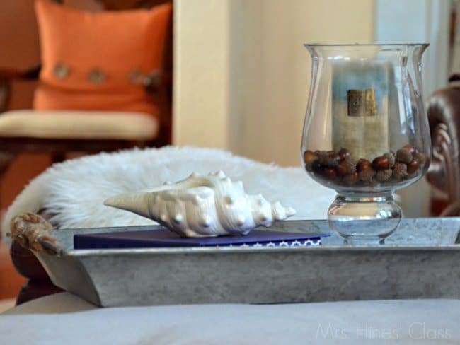 7 Pretty and Practical Ways to Use Trays in Home Decor / www.sharonehines.com