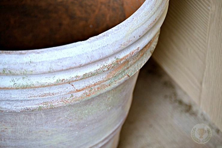 Transform Your Terra Cotta Pots with these AWESOME paint effects!
