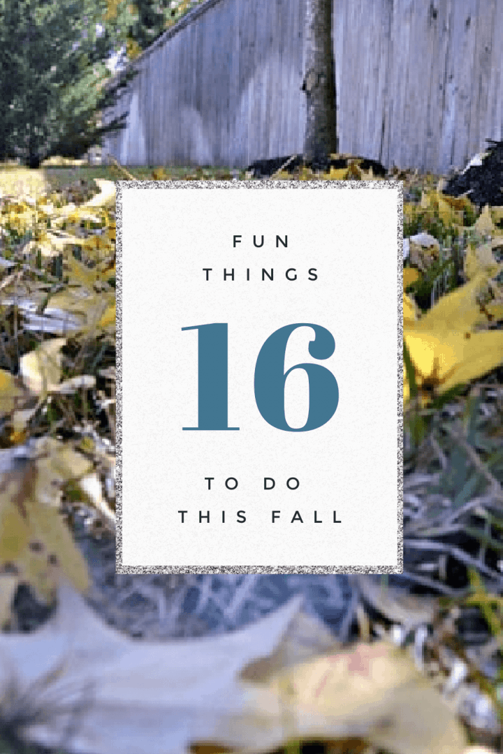 Yellow fall leaves on the ground near a fence on an image captioned 16 Fun Things to do This Fall