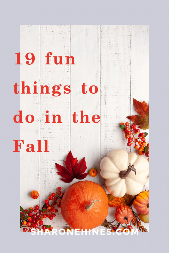 white painted fence background with red fall leaves, orange berries and an orange pumpkin and white pumpkin on an image that says 19 fun things to do in the fall